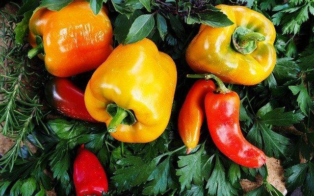黄色の野菜の栄養パワー