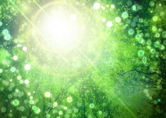緑のラグでリラックスできるおうち空間に