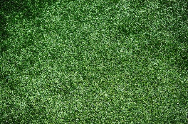 緑色のラグでリラックスできるおうち空間に
